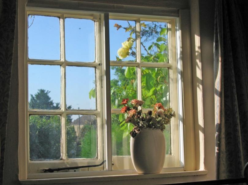 sunny-window